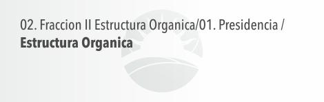 Estructura Organica - Presidencia